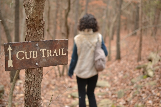 cub trail