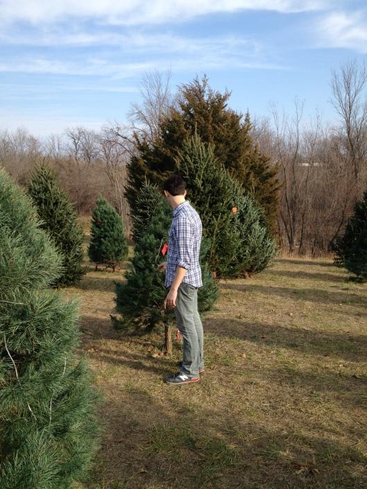 jurg looking at trees