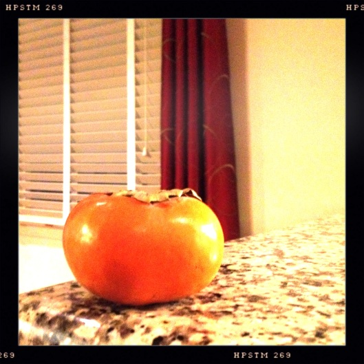 single persimmon