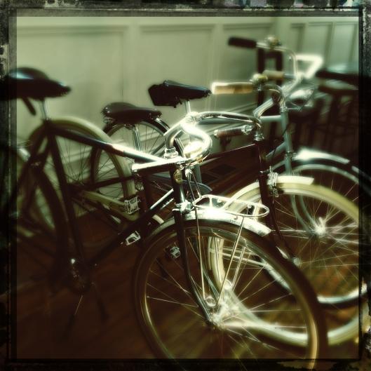 shiny bikes